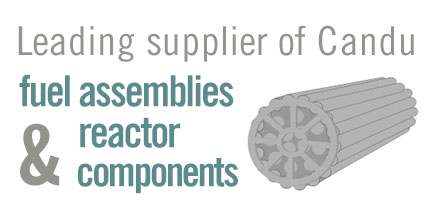 Leading supplier of Candu fuel assemblies & reactor components